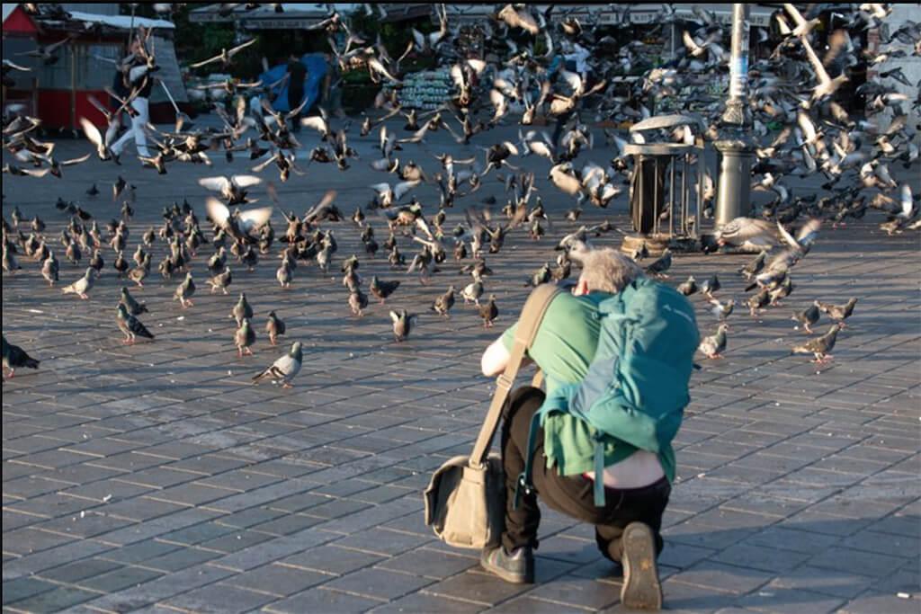 Peter Sandler, İstanbul Fotoğraf Turu sırasında İstanbul'un eski şehir merkezinde güvercinleri fotoğraflarken.